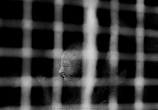 Goddess Behind The Net